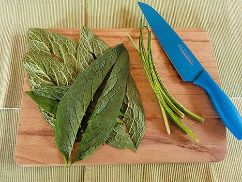 How To Make A Comfrey Salve For Arthritis and Joint Pain - Step 2