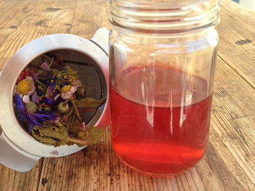 How To Make a Tincture Using Apple Cider Vinegar Instead of Alcohol - 5