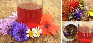 How To Make a Tincture Using Apple Cider Vinegar Instead of Alcohol - Cover