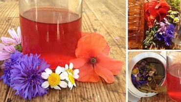 How To Make a Tincture Using Apple Cider Vinegar Instead of Alcohol