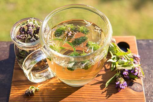 Prunella Vulgaris Tea