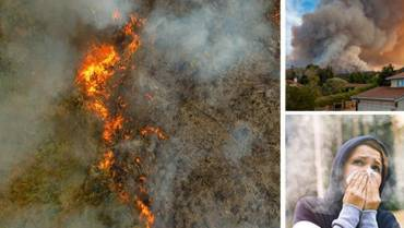 Wildfire and Smoke Season: Herbal Recipes for Lung Support