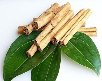 5 Plants Similar to Insulin that Lower Your Blood Sugar - Cinnamon