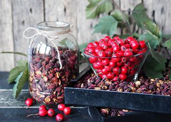 Hawthorn - Natural Remedies