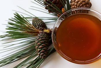 White Pine - Natural Remedies