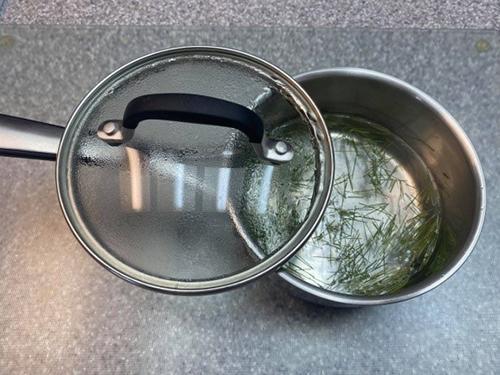 White Pine Tea - Step 3
